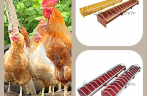 Лотковая кормушка для домашней птицы от украинского производителя